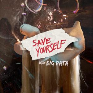 MNDR-Big-Data-Save-Yourself